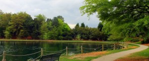 quiet park with lake and a bench